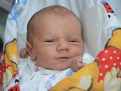 PAVEL ŠVORČÍK se narodil 6. listopadu 2012 ve 13:32 hodin s váhou 2890 gramů a délkou 49 centimetrů. S rodiči Pavlou Sedláčkovou a Radkem Švorčíkem, a s osmiletou sestřičkou Anežkou, mají domov v Broumově.