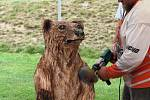 Do kmene hned vidět není, proto se medvěd narodil s jizvou