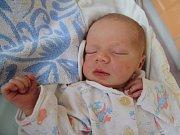 TIMOTEJ ŠPULÁK spatřil světlo světa 17. dubna 2017 v 8.27 hodin, vážil 3300 gramů a měřil 49 centimetrů. Rodiče Michaela a Vojtěch a bráška Damián (3 roky) jsou z Červeného Kostelce.