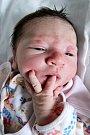 ŠTĚPÁNKA PASTOROVÁ z Náchoda se narodila 17. července 2017 v 9.28 hodin, vážila 3010 gramů a měřila 47 centimetrů. Těšili se na ni rodiče Klára Jaklová a Jiří Pastor i čtyřletá sestřička Karolínka.