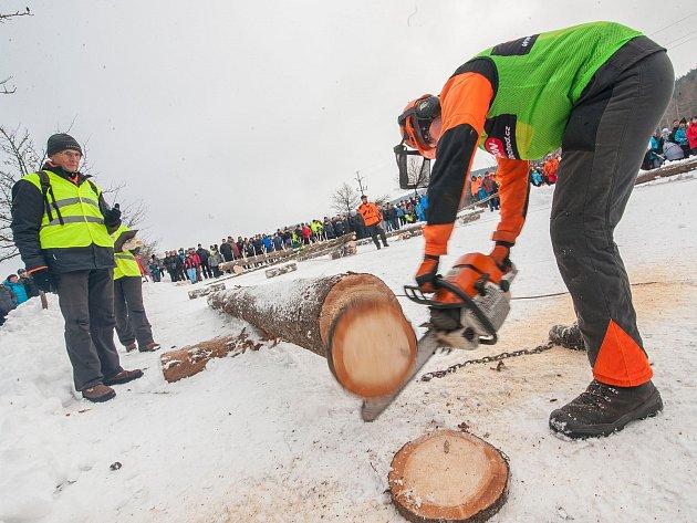 Soutěž o titul Dřevorubec roku v Adršpachu.