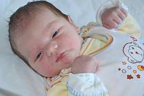 VOJTĚCH ARNOŠT se narodil 26. května 2016 mamince Michaele Arnoštové z Náchoda. Hodiny ukázaly 01.15 hodin, váha 3800 gramů a metr 51 centimetrů.