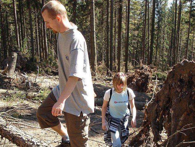 Ve výstupu na Ruprechtický Špičák teď  brání turistům spadané stromy.