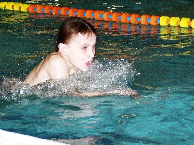 Zlatou medaili si přiváží náchodský plavec Jan Pavelka ze Zimního poháru  České republiky.