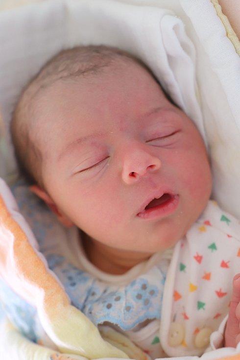 Sofie Přibylová ze Svinišťan potěšila svým příchodem na svět novopečené rodiče Dominiku Nešetřilovou a Kevina Přibyla. Holčička se narodila 26. ledna 2019 ve 14,08 hodin a její míry byly 3000 gramů a 48 centimetrů.