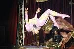 Z cirkusu Jo-Joo.