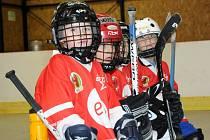 Dětskému a dívčímu hokejbalu patřila hronovská Wikov aréna.