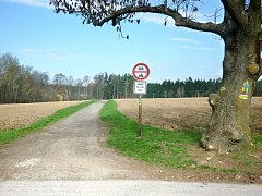 NEJDISKUTOVANĚJŠÍ byl zhruba dvousetmetrový úsek vedoucí lesním porostem Občina a cesta od Brodského.