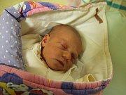 MELANIE PROCHÁZKOVÁ poprvé vykoukla na svět 31. ledna 2017 v 0.32 hodin. Její míry byly 2910 gramů a 47 centimetrů. S rodiči Šárkou a Jiřím a se sedmiletým bráškou Martínkem jsou z obce Zábrodí - Končiny.