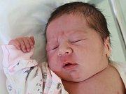 Karolína Marková z Teplic nad Metují poprvé vykoukla na svět 29. ledna 2019 v 19,24 hodin. Holčička vážila 3940 gramů a měřila 48 centimetrů. Rodiče se jmenují Eva a Ondřej Markovi a doma mají ještě rok a půl starou dcerku Zuzanku.