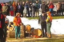 Dřevorubci poměřili svoje umění v Adršpachu.