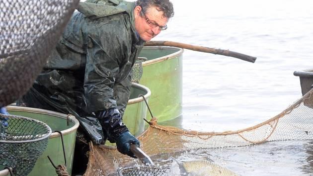 VÝLOV rybníka Špinka nabídl tradiční podívanou, která patří k podzimu. Spousta lidí nejen přihlížela, ale také si ryby nakoupila. Rybářům naštěstí přálo také krásné počasí.