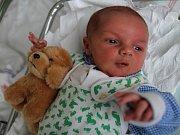 ONDŘEJ PODLEŠÁK poprvé vykoukl na svět 26. ledna 2017 v 8.54 hodin. Chlapeček vážil 3930 gramů a měřil 50 centimetrů. Rodiče Zuzana a Aleš Podlešákovi a tříletý bráška Martínek jsou z Police nad Metují.