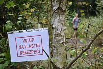 Příroda už dvě desítky let pohlcuje někdejší vyhlášené koupaliště.  Foto: Deník/Jiří Řezník