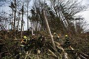 Silný vítr lámal stromy na Náchodsku.