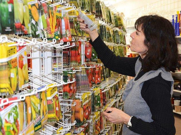 Semínka k předpěstování sazenic či k přímému výsevu lze pořídit v prodejnách pro zahrádkáře.