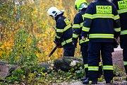 Spadlý strom v České Skalici odklízeli profesionální hasiči z Jaromeře společně s dobrovolnými hasiči z České Skalice. Na místě došlo k padu stromu na komunikaci a elektrické vedení které bylo přetrženo. Od pondělního odpoledne do dnešního rána zasahovaly