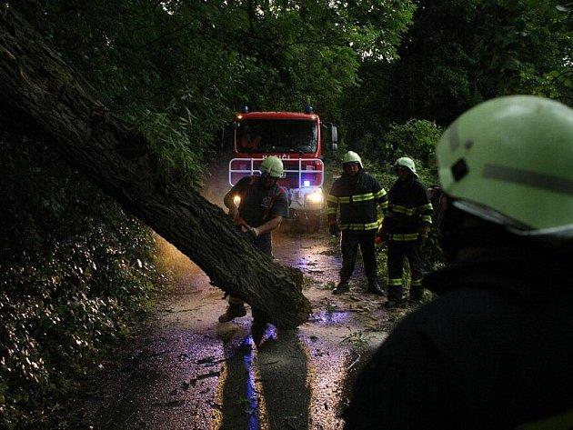 Bouřka se silným větrem si vyžádala okolo čtyřiceti vyvrácených a polámaných stromů. Fotografie jsou pořízeny na cestě z Žernova do Studnic a ve Všelibech.