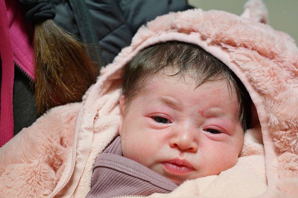 Anežka Šormová z Náchoda poprvé vykoukla na svět 29. prosince 2019 v 02:29 hodin, vážila 3880 gramů a měřila 51 centimetrů. Z prvního děťátka se radují rodiče Michaela Hůlková a Petr Šorm.