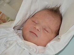 ELIŠKA RAISOVÁ se narodila 27. listopadu 2015 v 02.49 hodin s váhou 2830 g a délkou 48 cm. S rodiči Janou Teichmanovou a Tomášem Raisem mají domov v Náchodě.