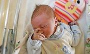 VOJTĚCH KUČERA z Hronova je prvním potomkem Terezy Žilíkové a Vojtěcha Kučery. Narodil se  14. srpna 2017 v  0.50 hodin, vážil 3490  gramů a měřil 50 centimetrů.
