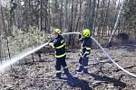 Na Náchodsku hořela hrabanka po těžbě, a to v těžko přístupném terénu. Na pasece 100 x 100 metrů v části Plhov zasahovalytři jednotky - náchodští profesionální a dobrovolní hasiči i dobrovolní hasiči z Dolní Radechové.
