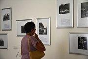 V komorním prostředí Zeleného domečku představuje spolek Apeiron drobný výřez fotografické tvorby Karla Čapka. Expozice je doplněna o několik reprodukcí kreseb Karla Čapka, jak je autor nechal otisknout třeba společně se svými fejetony nebo v knihách.