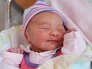 ANNA SCHMIDOVÁ z Martínkovic se narodila 17. ledna 2018 v 7,01 hodin, vážila 3275 gramů a měřila 49 centimetrů. Z prvního děťátka se radují rodiče Primož Galič a Jitka Schmidová.