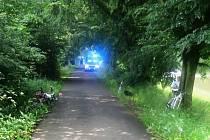 Cyklistům sice na jim vyhrazené stezce nehrozí srážky s motorovými vozidly, ale povinnosti být ohleduplní vůči sobě i jiným uživatelům stezek je samozřejmě niko nezbavil. Ne všichni si však nebezpečí uvědomují.
