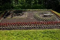V Novém Městě nad Metují zahrádníci osázeli květinové hodiny. Jsou to jedny ze dvou květinových hodin u nás.
