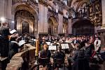 Kostele sv. Vojtěcha v Broumově přivítal Škampovo kvarteto, Kühnův smíšený a komorní sólisty Karla Růžičky. Deset festivalových koncertů navštívilo 3222 posluchačů, kteří přispěli na dobrovolném vstupném částkou 226 696 korun.