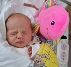 NIKOL BUBENÍČKOVÁ z Náchoda poprvé vykoukla na svět 2. dubna 2017 ve 22.32 hodin. Její míry byly 3120 gramů a 49 centimetrů. Ze svého prvního děťátka se radují rodiče Lenka a Lukáš.