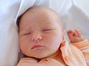 Ella Koukola z Bohuslavic se narodila 28. ledna 2019  v 03,11 hodin. Holčička vážila 3500 gramů a měřila 51 centimetrů. Z prvního děťátka se radují šťastní rodiče Ivana a Radek.