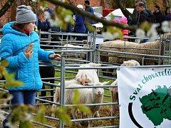 Ratibořické ovčácké slavnosti