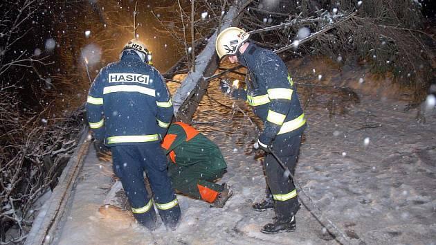 Kvůli těžkému sněhu na řadě míst popadaly stromy přes cestu. Proto musela být na více jak hodinu uzavřena silnice z Nového Města nad Metují ve směru na Slavoňov. Hasiči společně s lesníky odstranily dva silné stormy.