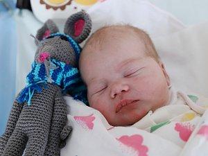 ALŽBĚTA BERANOVÁ potěšila svým příchodem na svět šťastné rodiče Radku a Martina z obce Suchý Důl. Holčička se narodila 29. ledna 2018 v 15,04 hodin, vážila 3675 gramů a měřila 47 centimetrů. Doma se na ni těšili šestiletá Emička a tříletý Martínek.