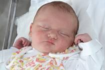 ANNA LOKVENCOVÁ se narodila 25. června 2013 ve 21:56 hodin s váhou 3205 g a délkou 50 cm. S rodiči Martinou a Jiřím a se sourozenci Maruškou (8 let), Jiříkem (7 let), Verunkou (4 roky) a Kačenkou (necelé 3 roky) bydlí v Náchodě.