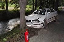 Auto zarazil před pádem do vody vzrostlý strom.