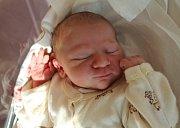 ALENA ZIMMERMANNOVÁ poprvé vykoukla na svět 16. ledna 2017 v 9.53 hodin. Její míry byly 2800 gramů a 45 centimetrů. Rodiče Lenka Zimmermannová a Jan Presse jsou z Hronova, kde se na sestřičku těšili i sourozenci Diana, Sylva a Dominik.