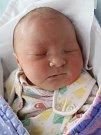 HANA MORÁVKOVÁ z Velkého Dřevíče potěšila svým příchodem na svět rodiče Petru Čejchanovou a Jiřího Morávka. Holčička se narodila 2. října 2017 v 17,32 hodin, vážila 3765 g a měřila 49 cm. Těšila se na ni také dvacetiletá sestra Lenka.