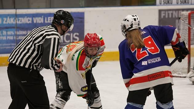 O víkendu se v Náchodě uskuteční hokejový turnaj žen.