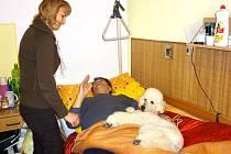 Léčba psem pomáhá a dodává seniorům elán.