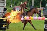 Kaskadér a chovatel koní Jiří Pácha z Rokytnice v Orlických horách, který se prosadil i v zahraničních filmech, patří k české špičce ve westernovém sportu a řadí se k elitě jezdců v rodeové disciplíně.