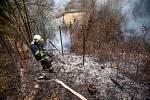 Hasiči zasahovali u požáru lesního porostu