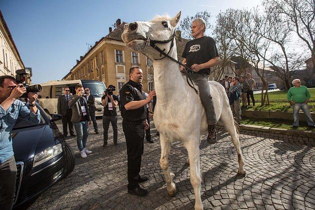 Návštěva Vlády a Andreje Babiše vKrálovéhradeckém kraji. Proti Andreji Babišovy vJosefově protestoval na koni sochař Novák.