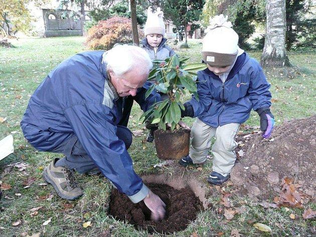 Sobotní Slavnost stromů bude zahájena v devět hodin společným sázením.