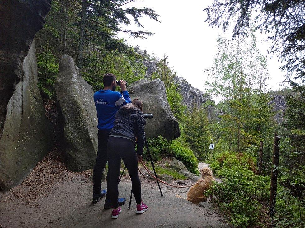 Život vzácného druhu měli turisté možnost pozorovat během tří víkendů stativovým dalekohledem sodborným výkladem strážců i pracovníků Agentury ochrany přírody a krajiny ze Správy CHKO Broumovsko.