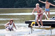 Vodní ptáci na rybníku Brodský.