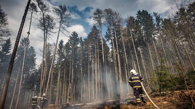 Požár lesa u Nového Města nad Metují.