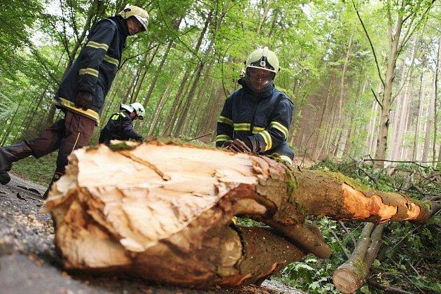 Cestu do Pekla zatarasil spadlý strom